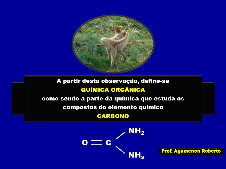 Prof. Agamenon Roberto A URÉIA era obtida a partir da urina, onde ela existe devido à degradação de proteínas no organismo A URÉIA era obtida a partir