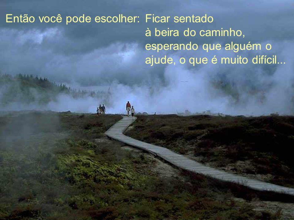 Então você pode escolher: Ficar sentado à beira do caminho, esperando que alguém o ajude, o que é muito difícil...