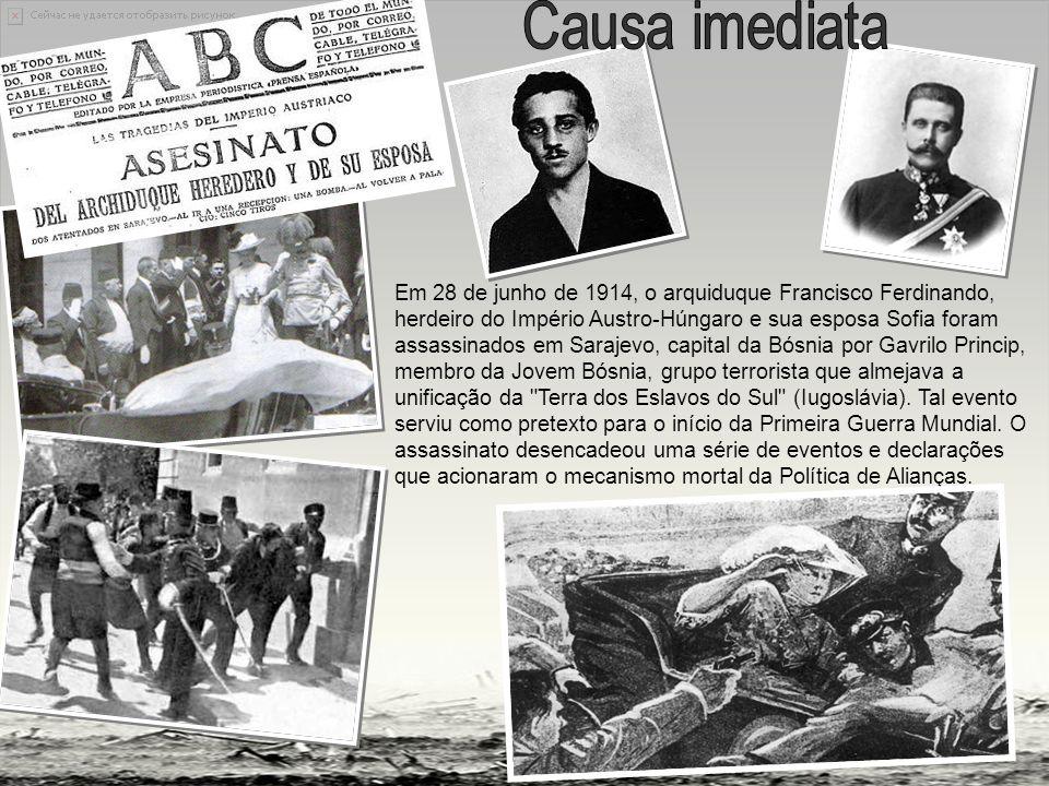 Em 28 de junho de 1914, o arquiduque Francisco Ferdinando, herdeiro do Império Austro-Húngaro e sua esposa Sofia foram assassinados em Sarajevo, capital da Bósnia por Gavrilo Princip, membro da Jovem Bósnia, grupo terrorista que almejava a unificação da Terra dos Eslavos do Sul (Iugoslávia).