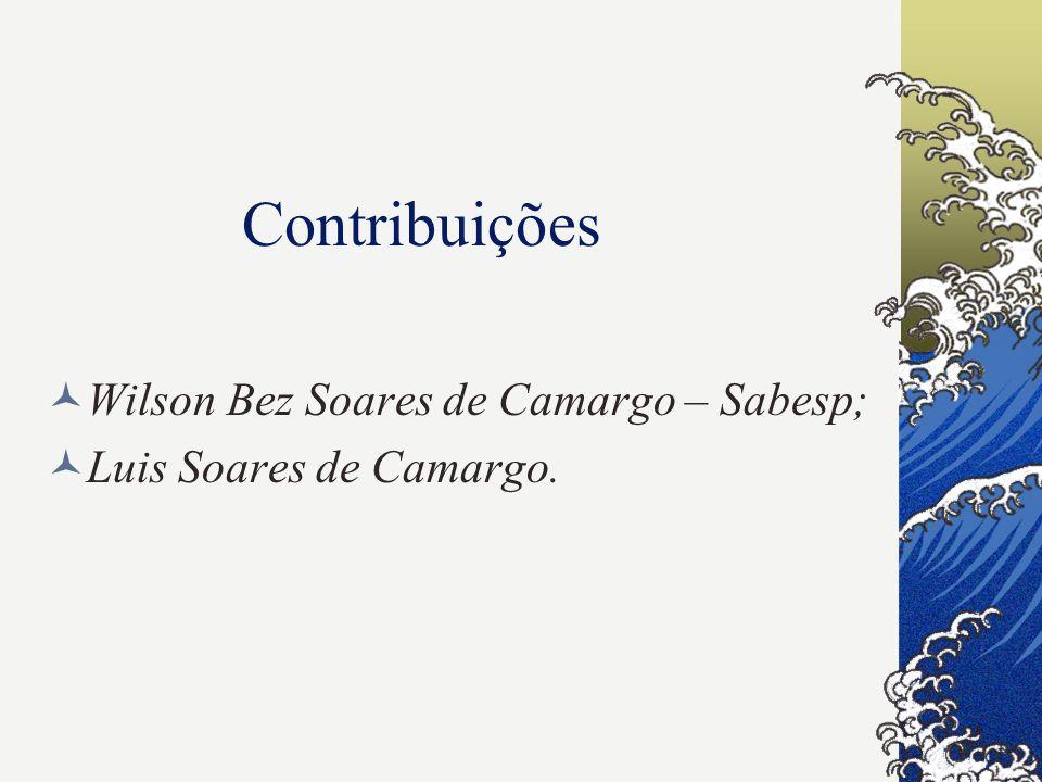 Contribuições Wilson Bez Soares de Camargo – Sabesp; Luis Soares de Camargo.