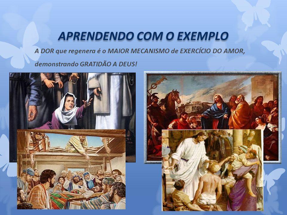 APRENDENDO COM O EXEMPLO A DOR que regenera é o MAIOR MECANISMO de EXERCÍCIO DO AMOR, demonstrando GRATIDÃO A DEUS!