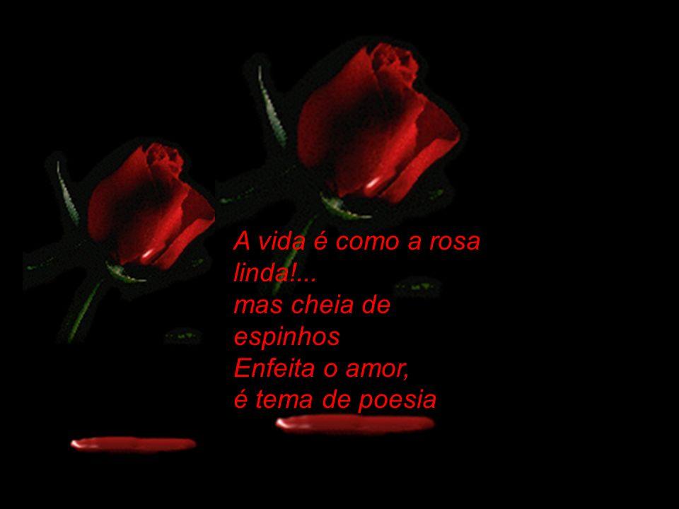 A vida é como a rosa linda!... mas cheia de espinhos Enfeita o amor, é tema de poesia
