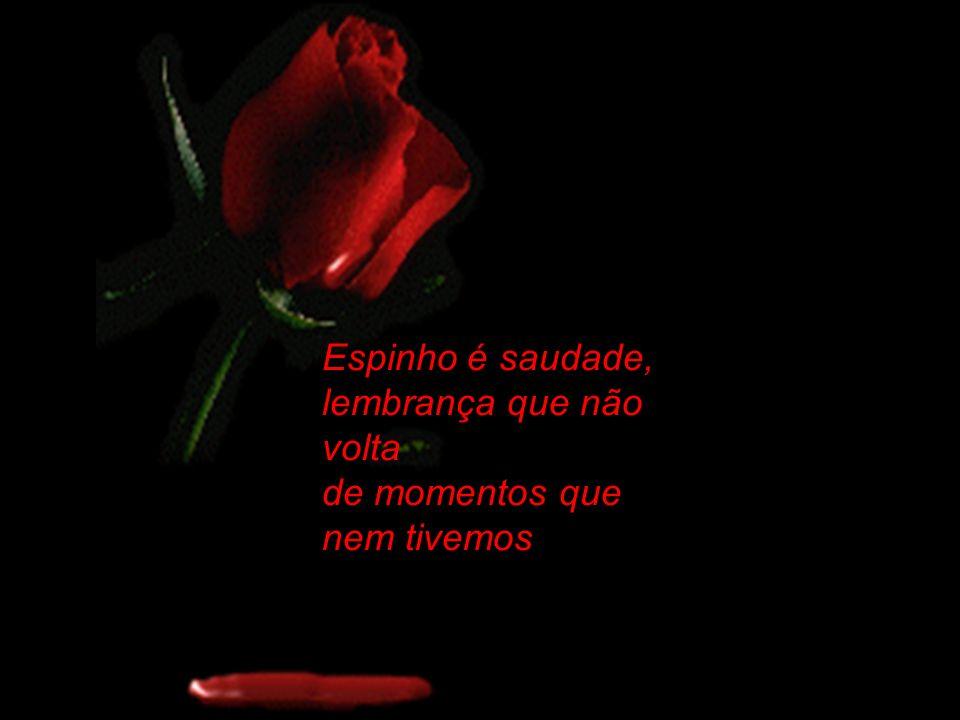 Os espinhos são as dores dos amores mal resolvidos febre de momentos não dormidos