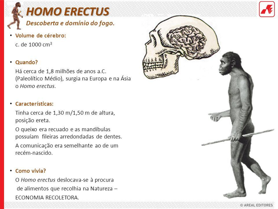 Volume de cérebro: c. de 1000 cm 3 Quando? Há cerca de 1,8 milhões de anos a.C. (Paleolítico Médio), surgia na Europa e na Ásia o Homo erectus. Caract