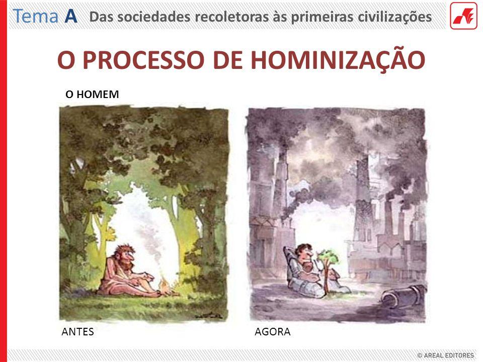 Das sociedades recoletoras às primeiras civilizações Tema A O HOMEM ANTESAGORA
