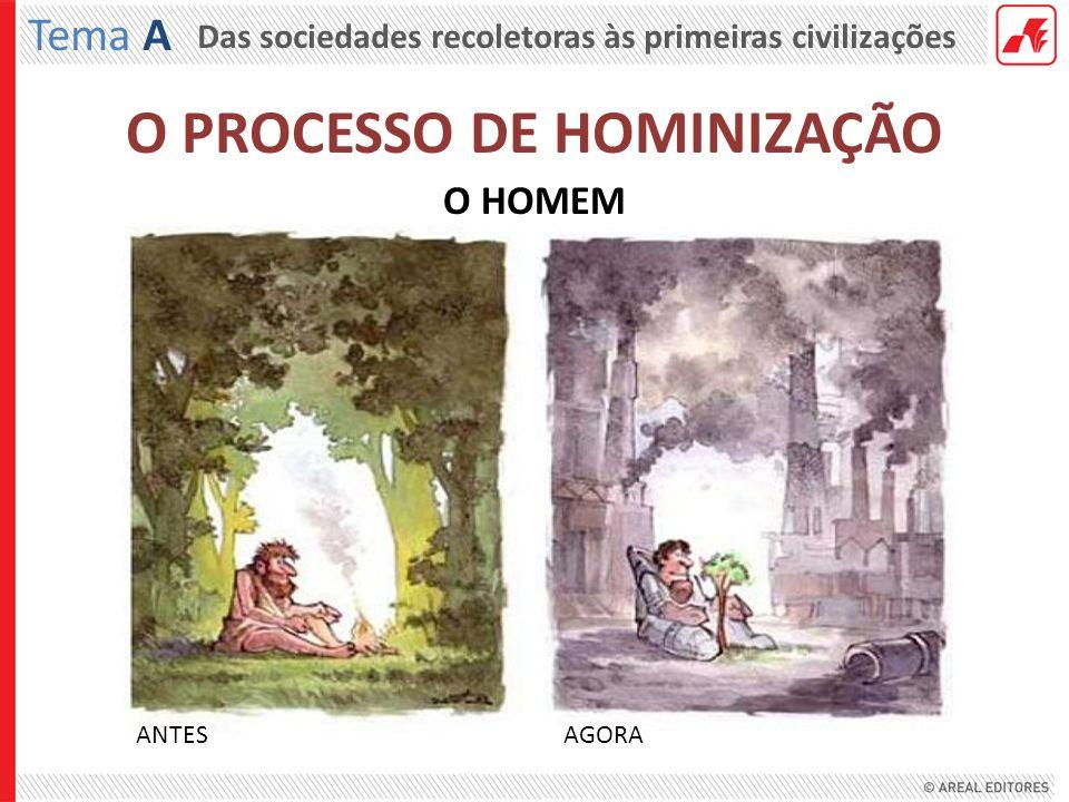 Das sociedades recoletoras às primeiras civilizações Tema A O HOMEM ANTES AGORA