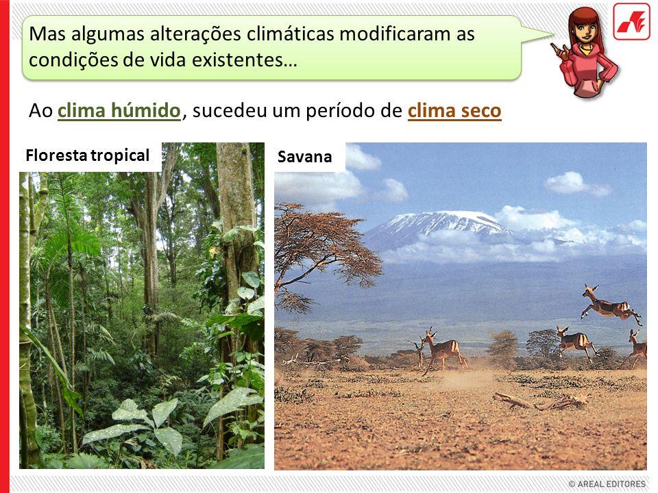 Ao clima húmido Mas algumas alterações climáticas modificaram as condições de vida existentes… Floresta tropical Savana, sucedeu um período de clima s