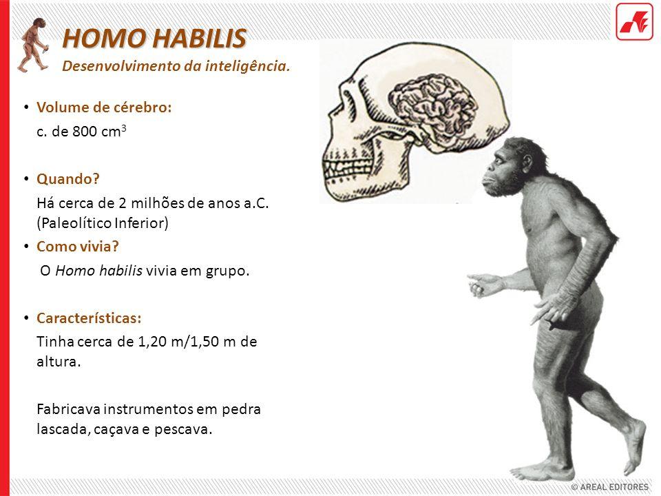 Volume de cérebro: c. de 800 cm 3 Quando? Há cerca de 2 milhões de anos a.C. (Paleolítico Inferior) Como vivia? O Homo habilis vivia em grupo. Caracte