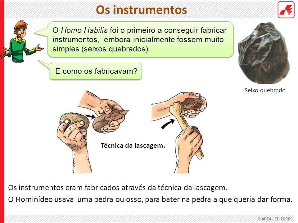 Os instrumentos Seixo quebrado. O Homo Habilis foi o primeiro a conseguir fabricar instrumentos, embora inicialmente fossem muito simples (seixos queb
