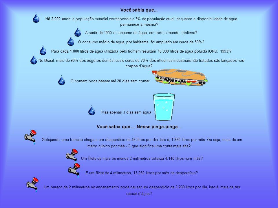 Você sabia que... Há 2.000 anos, a população mundial correspondia a 3% da população atual, enquanto a disponibilidade de água permanece a mesma? A par