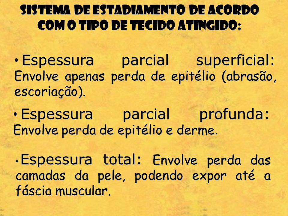 Sistema de estadiamento de acordo com o tipo de tecido atingido: Espessura parcial superficial: Envolve apenas perda de epitélio (abrasão, escoriação)
