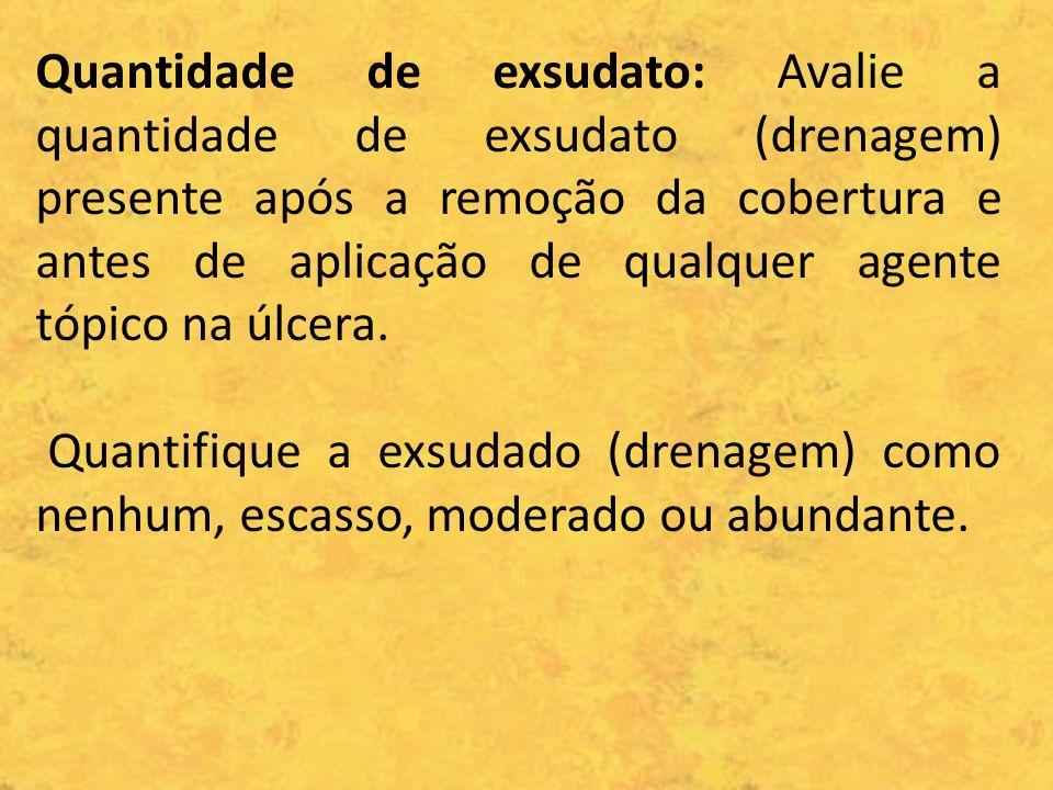 Quantidade de exsudato: Avalie a quantidade de exsudato (drenagem) presente após a remoção da cobertura e antes de aplicação de qualquer agente tópico