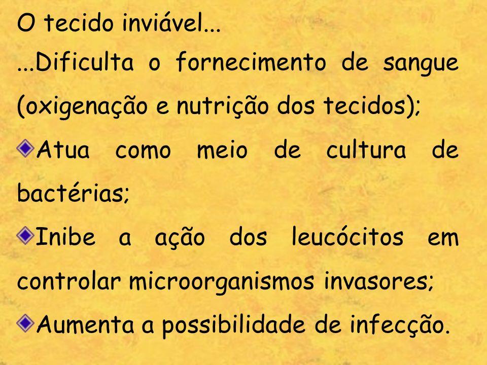 O tecido inviável......Dificulta o fornecimento de sangue (oxigenação e nutrição dos tecidos); Atua como meio de cultura de bactérias; Inibe a ação do