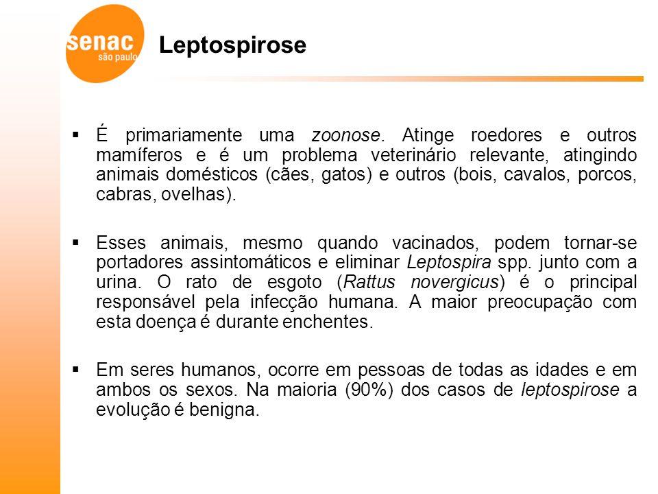 Leptospirose É primariamente uma zoonose.