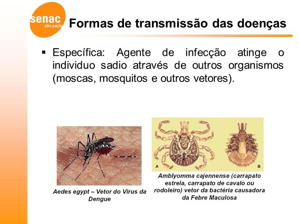 Específica: Agente de infecção atinge o individuo sadio através de outros organismos (moscas, mosquitos e outros vetores).