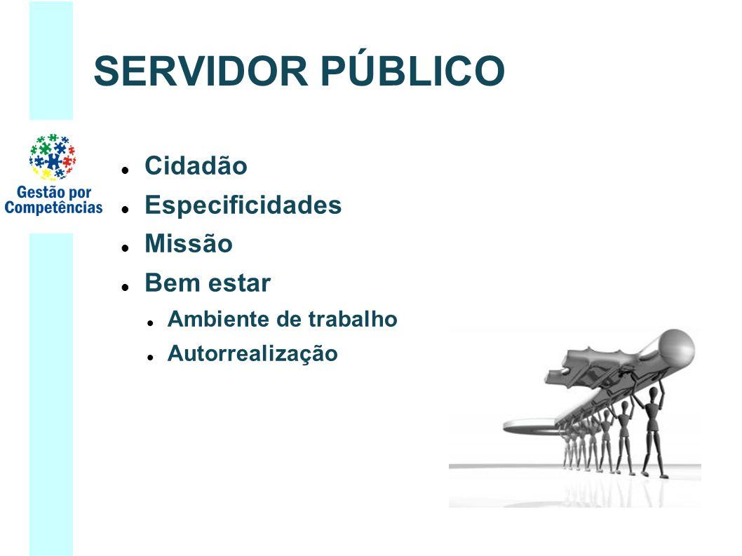 Cidadão Especificidades Missão Bem estar Ambiente de trabalho Autorrealização SERVIDOR PÚBLICO