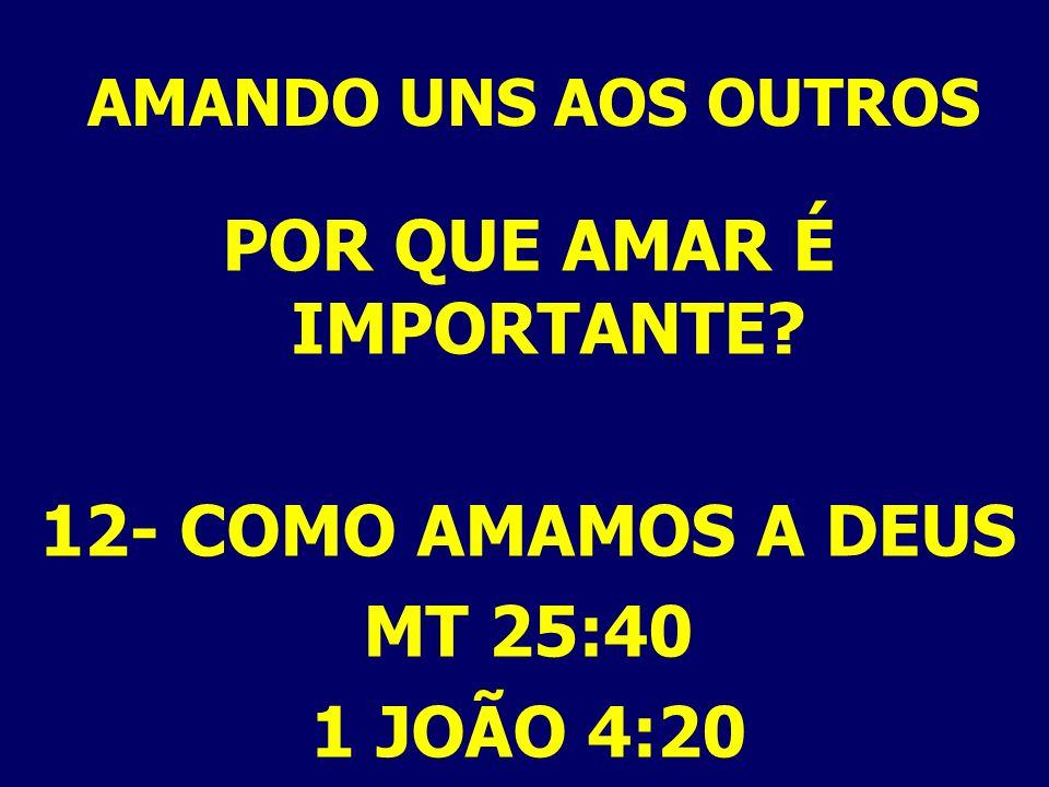 AMANDO UNS AOS OUTROS POR QUE AMAR É IMPORTANTE? 12- COMO AMAMOS A DEUS MT 25:40 1 JOÃO 4:20