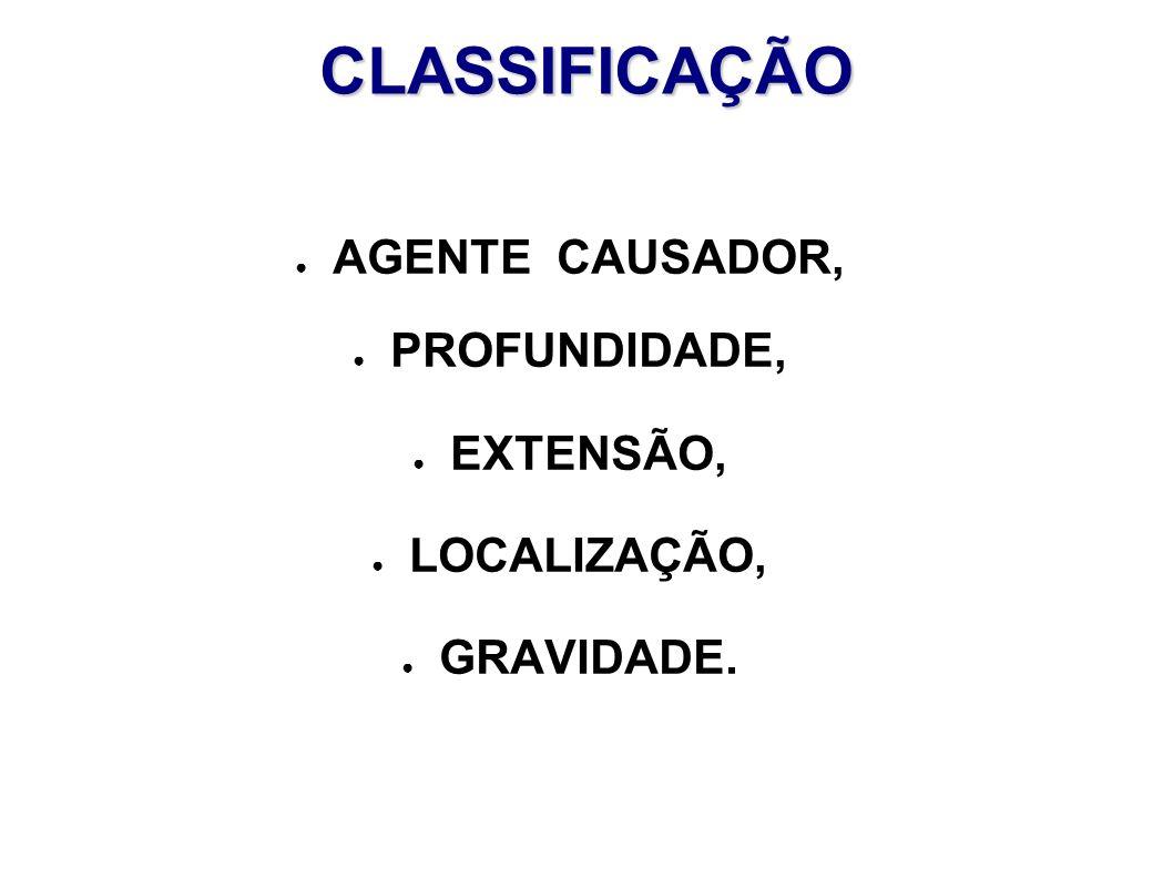 CLASSIFICAÇÃO AGENTE CAUSADOR, PROFUNDIDADE, EXTENSÃO, LOCALIZAÇÃO, GRAVIDADE.
