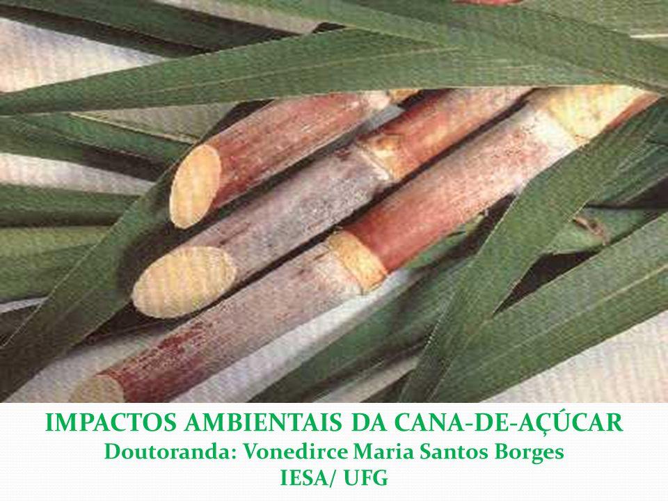 A cultura da cana-de-açúcar A CULTURA DA CANA-DE-AÇÚCAR -gênero Saccharum, ordem Gramínea, classe Monocotilédones - origem: Sudeste Asiático (Nova Guiné) - principal matéria-prima (açúcar e álcool - etanol) - cultura conservacionista (pouco revolvimento do solo em função do plantio e colheita) - planta semiperene - ciclo de quatro a sete anos - sistema radicular profundo - colheita: cana crua ou após queimada substituição de culturas, sobretudo, grãos (soja/milho) e áreas de pastagens