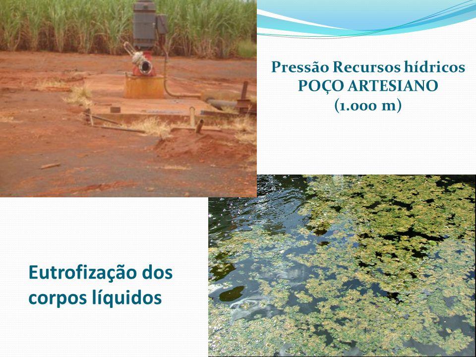Eutrofização dos corpos líquidos Pressão Recursos hídricos POÇO ARTESIANO (1.000 m)