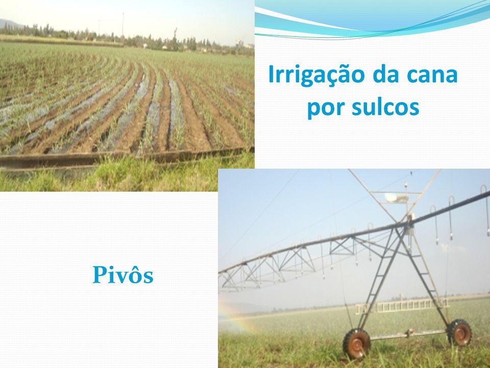 Irrigação da cana por sulcos Pivôs
