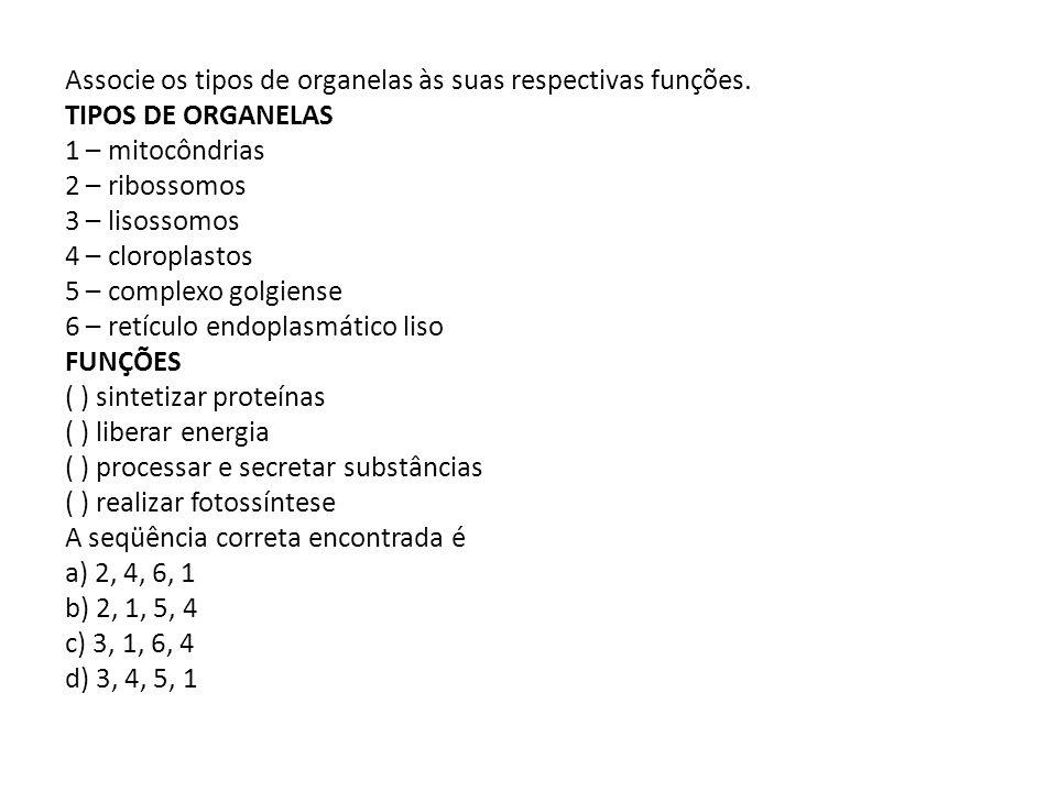 Associe os tipos de organelas às suas respectivas funções. TIPOS DE ORGANELAS 1 – mitocôndrias 2 – ribossomos 3 – lisossomos 4 – cloroplastos 5 – comp