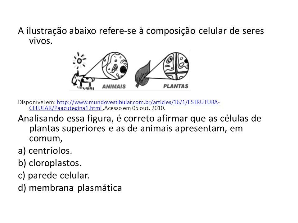 A ilustração abaixo refere-se à composição celular de seres vivos. Disponível em: http://www.mundovestibular.com.br/articles/16/1/ESTRUTURA- CELULAR/P