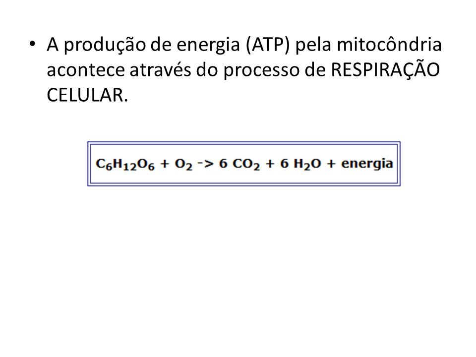 RESPIRAÇÃO CELULAR: – Glicólise Produção de 4ATPs e gasto de 2ATPs, saldo final = 2 ATPs Produção de 2 NADH – Ciclo de Krebs Produção de duas moléculas de GTP.