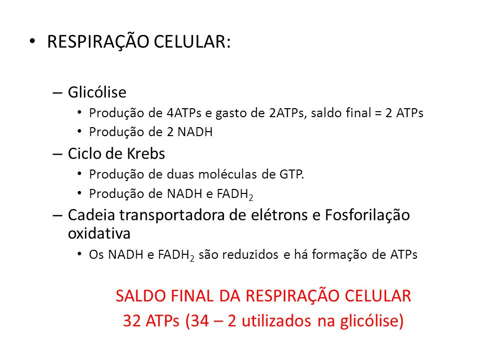 RESPIRAÇÃO CELULAR: – Glicólise Produção de 4ATPs e gasto de 2ATPs, saldo final = 2 ATPs Produção de 2 NADH – Ciclo de Krebs Produção de duas molécula