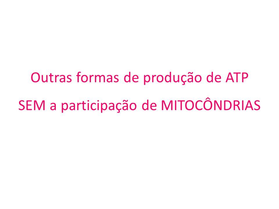 Outras formas de produção de ATP SEM a participação de MITOCÔNDRIAS