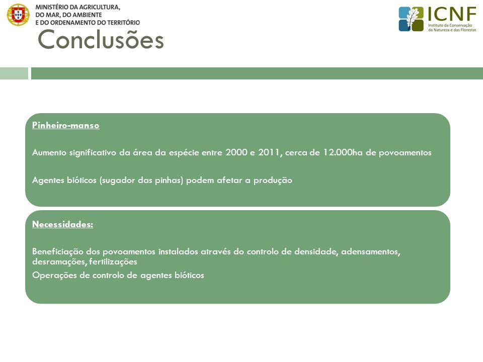Conclusões Pinheiro-manso Aumento significativo da área da espécie entre 2000 e 2011, cerca de 12.000ha de povoamentos Agentes bióticos (sugador das p