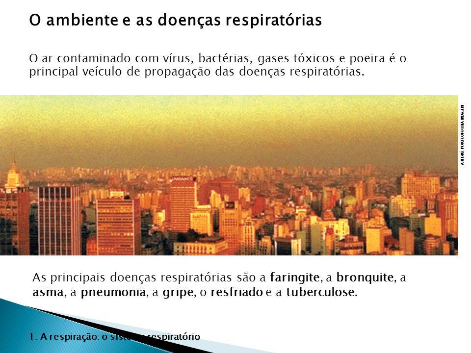O ambiente e as doenças respiratórias ANDRÉ PORTO/FOLHA IMAGEM O ar contaminado com vírus, bactérias, gases tóxicos e poeira é o principal veículo de