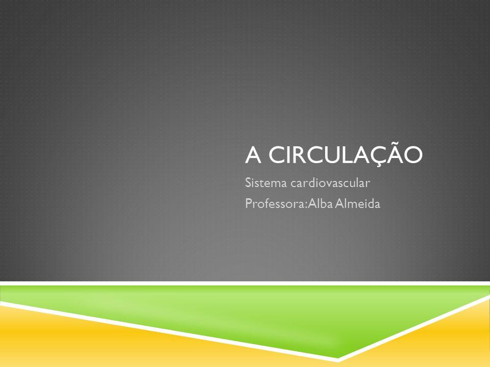 A CIRCULAÇÃO Sistema cardiovascular Professora: Alba Almeida