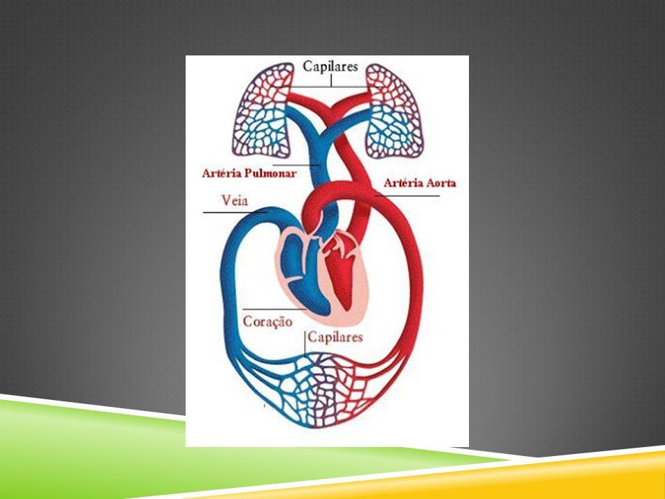 Pressão exercida pelo coração sobre as artérias, que pode ser medida por dois valores; máximo (pressão sistólica), que diz respeito à pressão que o coração faz para bombear o sangue em direção aos outros órgãos e o mínimo (pressão diastólica) que se refere à acomodação do sangue nos vasos sanguíneos.