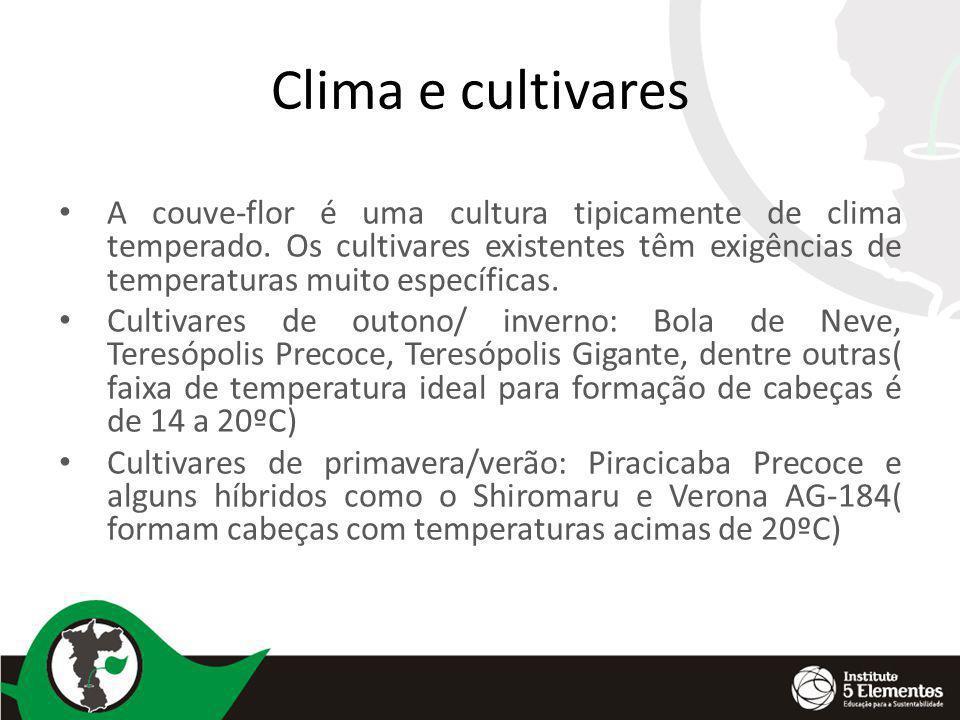 Clima e cultivares A couve-flor é uma cultura tipicamente de clima temperado. Os cultivares existentes têm exigências de temperaturas muito específica