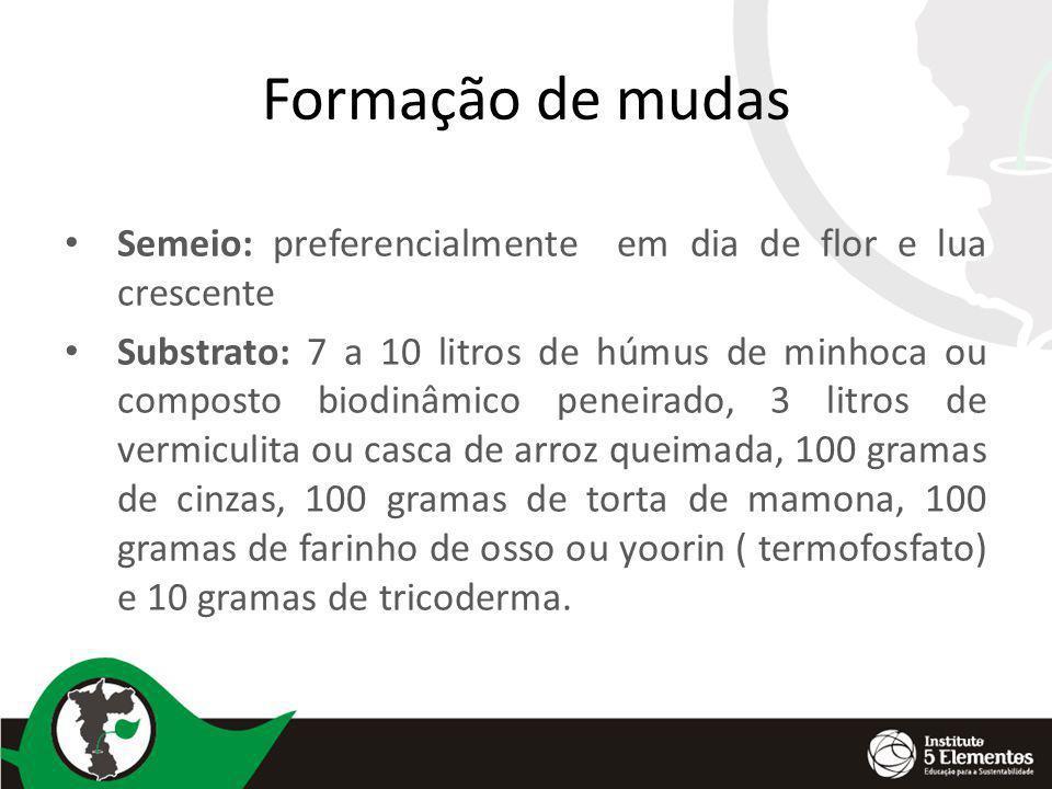 Formação de mudas Semeio: preferencialmente em dia de flor e lua crescente Substrato: 7 a 10 litros de húmus de minhoca ou composto biodinâmico peneir