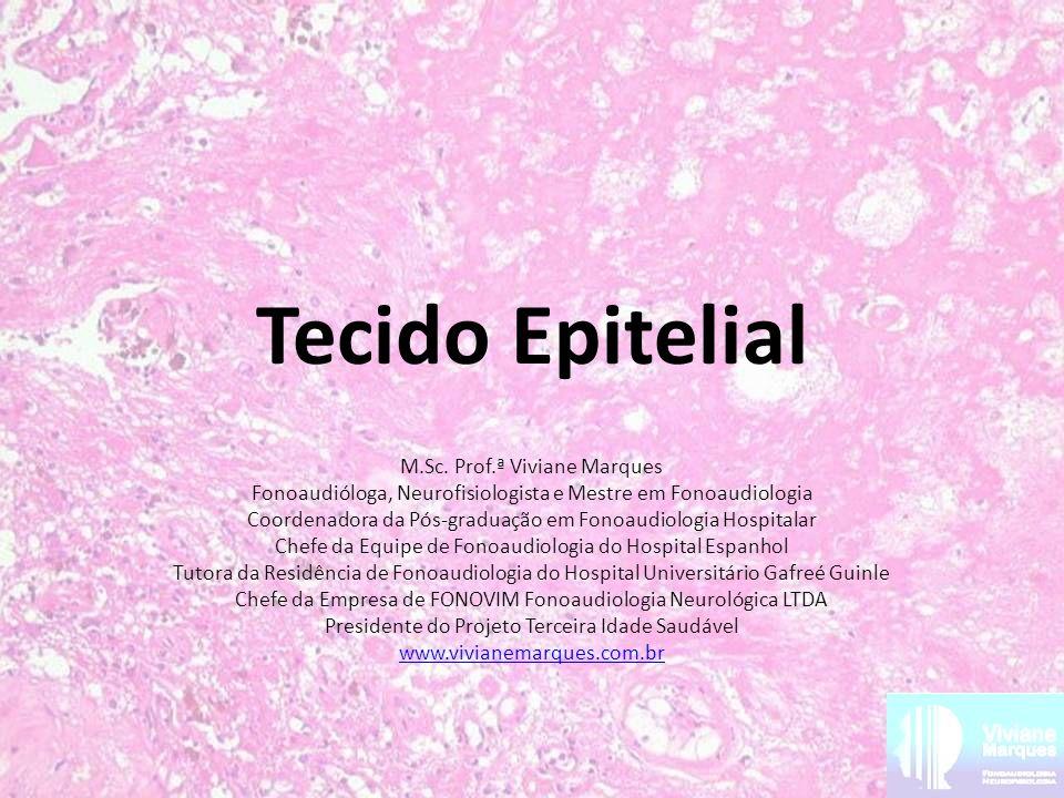 Tecido Epitelial M.Sc. Prof.ª Viviane Marques Fonoaudióloga, Neurofisiologista e Mestre em Fonoaudiologia Coordenadora da Pós-graduação em Fonoaudiolo