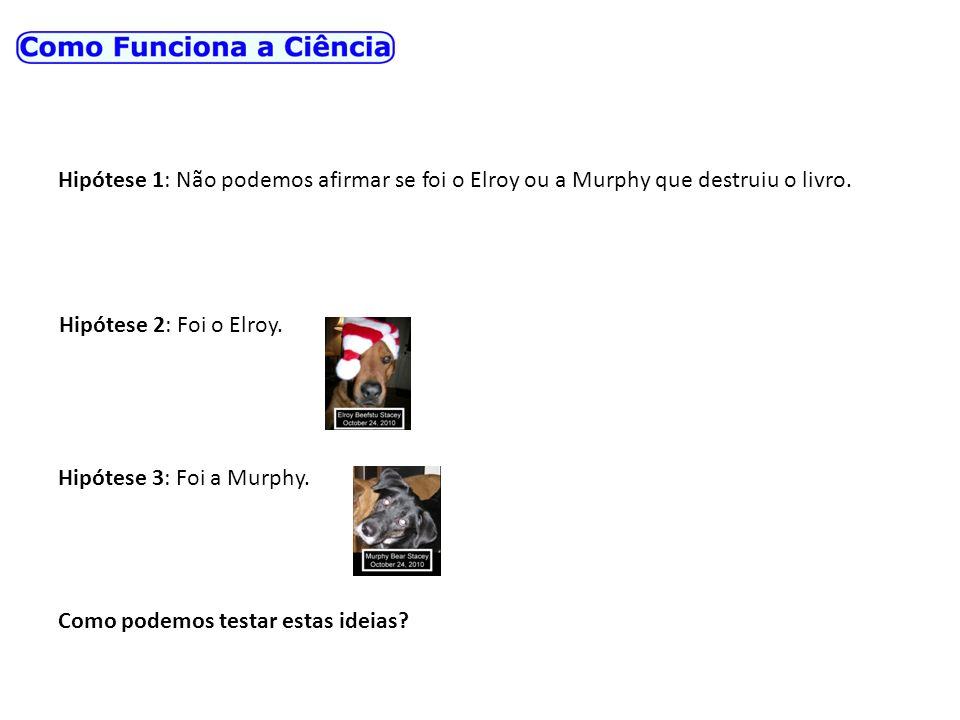 Hipótese 1: Não podemos afirmar se foi o Elroy ou a Murphy que destruiu o livro. Hipótese 2: Foi o Elroy. Hipótese 3: Foi a Murphy. Como podemos testa