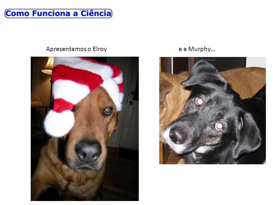 Apresentamos o Elroy e a Murphy…