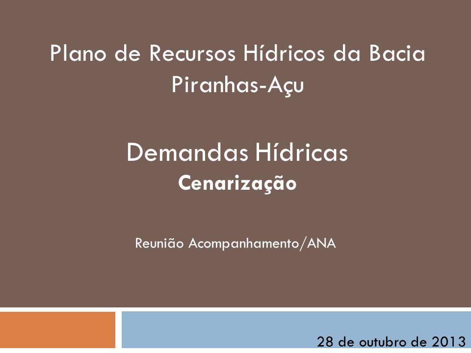Plano de Recursos Hídricos da Bacia Piranhas-Açu Demandas Hídricas Cenarização Reunião Acompanhamento/ANA 28 de outubro de 2013