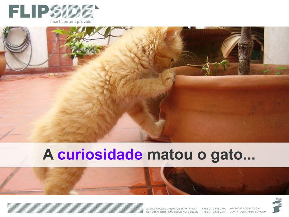 A curiosidade matou o gato...