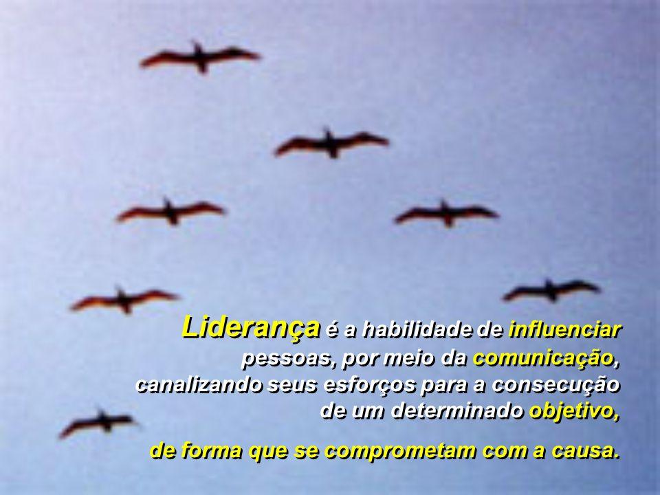 Liderança é a habilidade de influenciar pessoas, por meio da comunicação, canalizando seus esforços para a consecução de um determinado objetivo, de f
