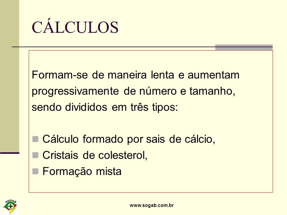 www.sogab.com.br CÁLCULOS Formam-se de maneira lenta e aumentam progressivamente de número e tamanho, sendo divididos em três tipos: Cálculo formado p