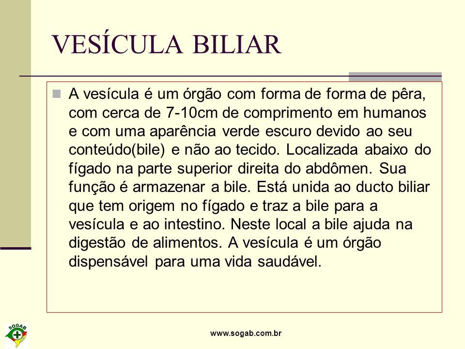 VESÍCULA BILIAR A vesícula é um órgão com forma de forma de pêra, com cerca de 7-10cm de comprimento em humanos e com uma aparência verde escuro devid