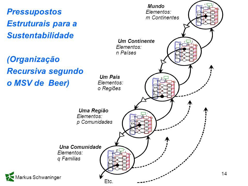 Markus Schwaninger 14 Pressupostos Estruturais para a Sustentabilidade (Organização Recursiva segundo o MSV de Beer)