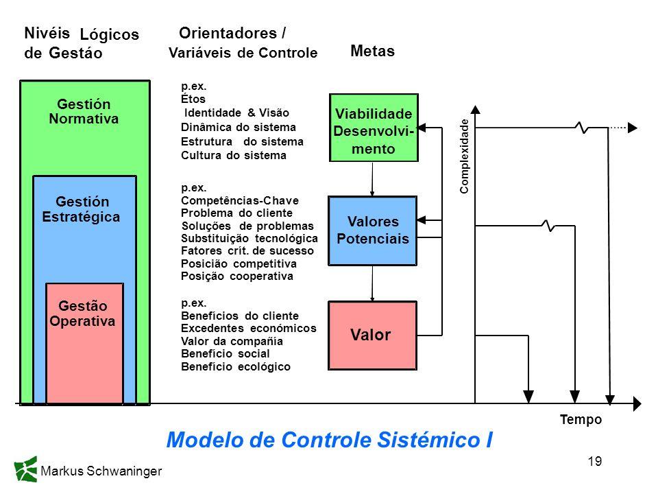 Markus Schwaninger 19 Modelo de Controle Sistémico I Metas Nivéis Lógicos deGestáo Gestión Normativa Gestão Operativa Valores Potenciais Valor Gestión