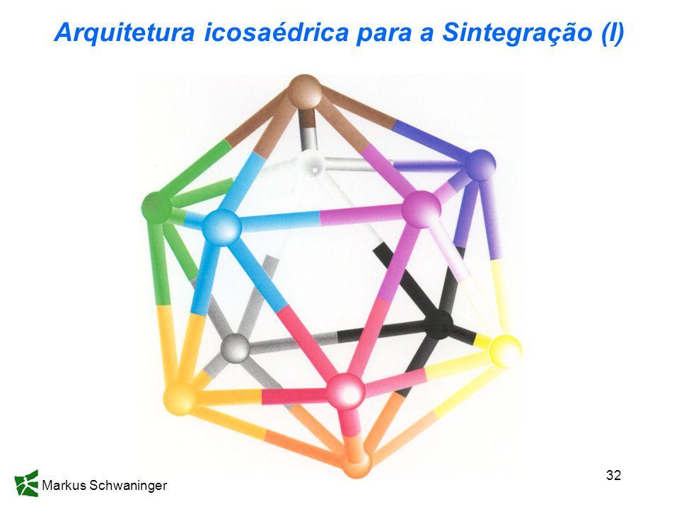 Markus Schwaninger 32 Arquitetura icosaédrica para a Sintegração (I)