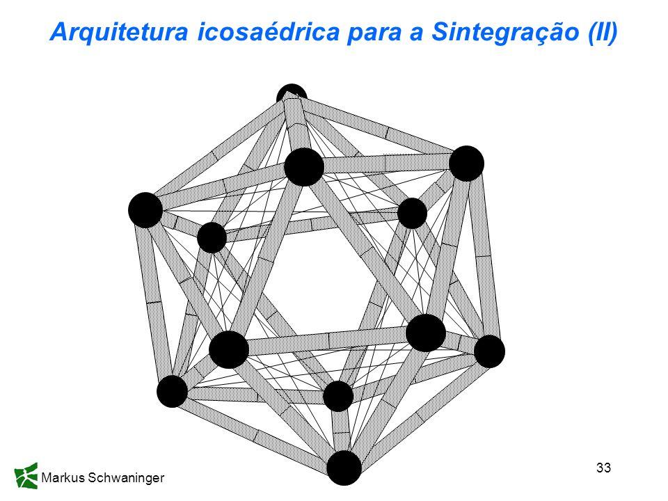 Markus Schwaninger 33 Arquitetura icosaédrica para a Sintegração (II)