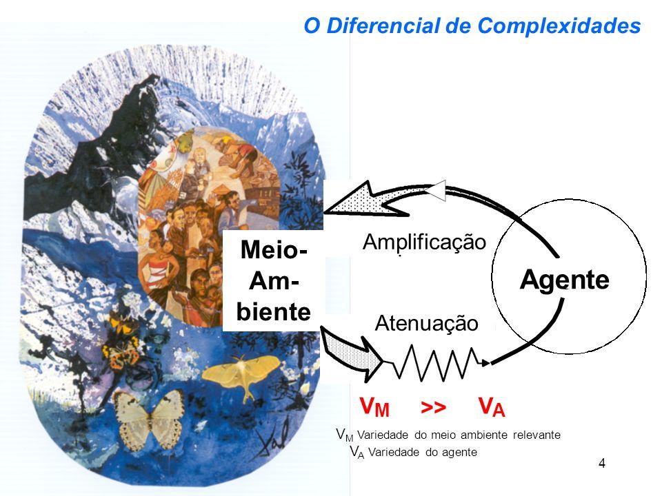 Markus Schwaninger Meio- Am- biente 4 O Diferencial de Complexidades Amplificação VV AM >> V M Variedade do meio ambiente relevante V A Variedade do a