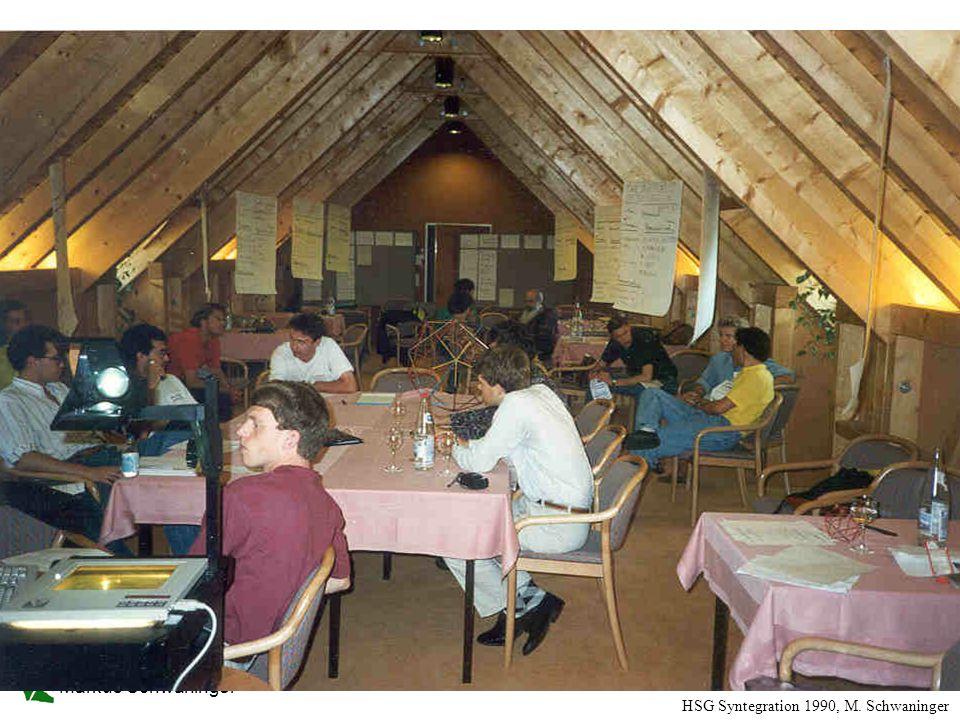 Markus Schwaninger 44 HSG Syntegration 1990, M. Schwaninger